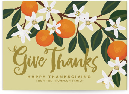 Orange Blossoms Thanksgiving Cards
