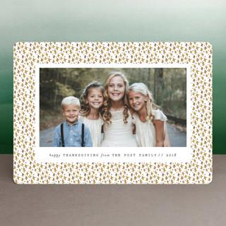 Saint Cecilia Thanksgiving Cards