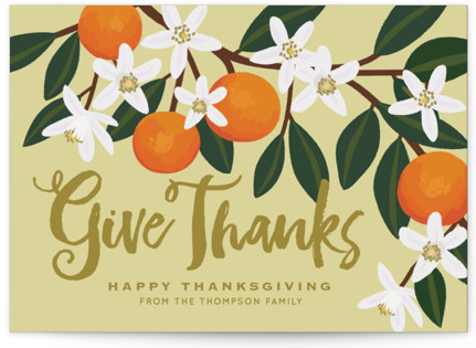 Orange Blossoms Thanksgiving Postcards