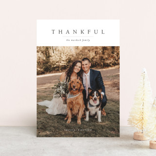 Minimal Joy Thanksgiving Postcards