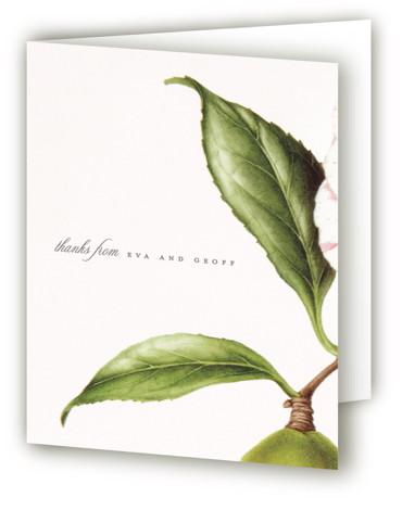 This is a botanical, painterly, grey, pink Wedding Thank You Cards by kelli hall called Botanic with Standard printing on Standard Cover in Card fold over (blank inside) format. A study in contrasts: a vintage floral mixed with solid black ...