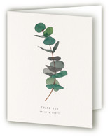 This is a green wedding thank you card by jinseikou called eucalyptus with standard printing on strathmore in standard.