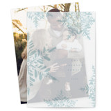 This is a blue vellum holiday card by Robert and Stella called Dusted Snowflakes with standard printing on translucent vellum in overlay.