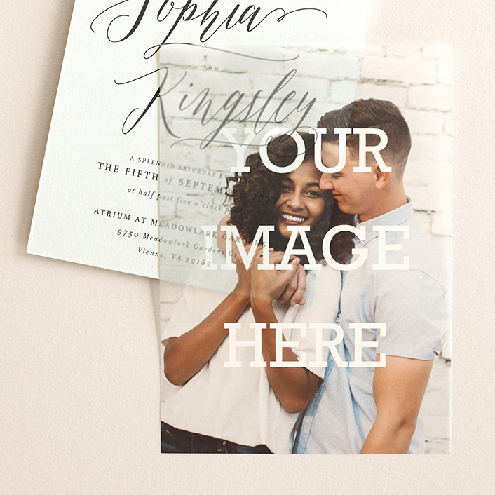 """""""The Big Picture"""" - Simple, Modern Vellum Overlay in Mist by Minted."""