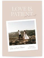 This is a pink valentine postcard by Owl and Toad called Patient with standard printing on signature in postcard.