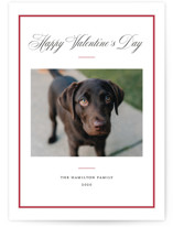 This is a red valentine postcard by Annie Shapiro called Elegant Frame with standard printing on signature in postcard.