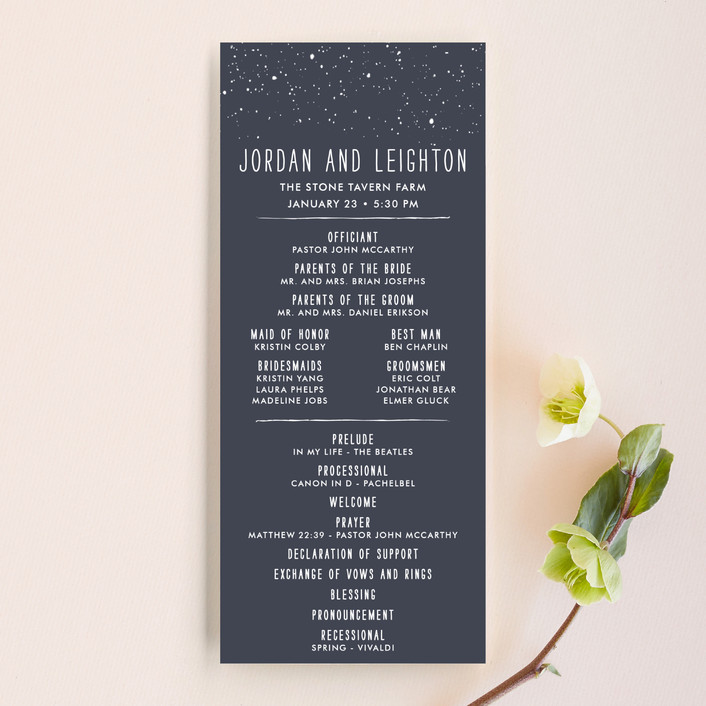 """""""Snowy Soiree"""" - Classical, Whimsical & Funny Unique Wedding Programs in Midnight by thenickdyer."""