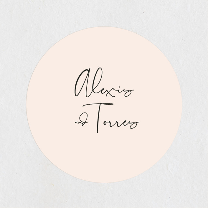 """""""Just the Two of Us"""" - Wedding Favor Stickers in Blush by Jennifer Wick."""